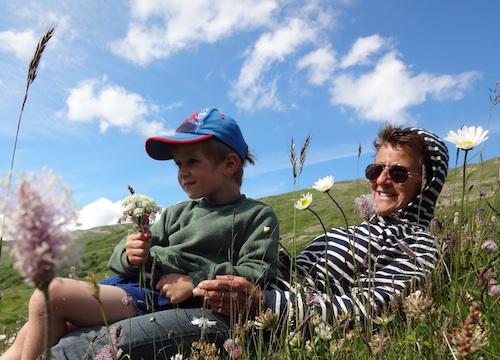 balade nature en famille, apprendre les plantes, plantes sauvages, fleurs sauvages, promenade dans les bauges