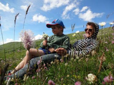 balade phyto en Savoie, balade en famille en savoie
